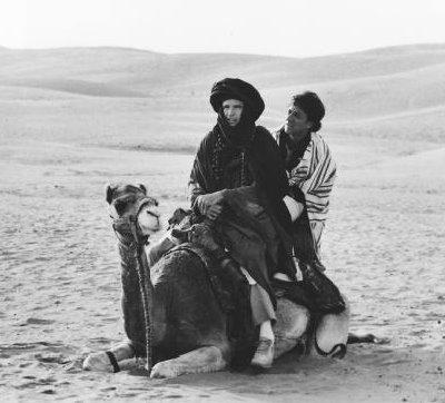 Ishtar-blind-camel