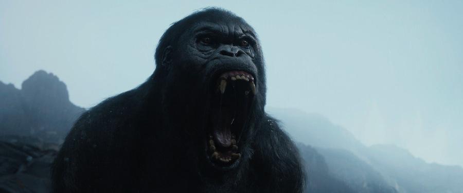 engelsk film tarzan mannen ape iran gutt sex